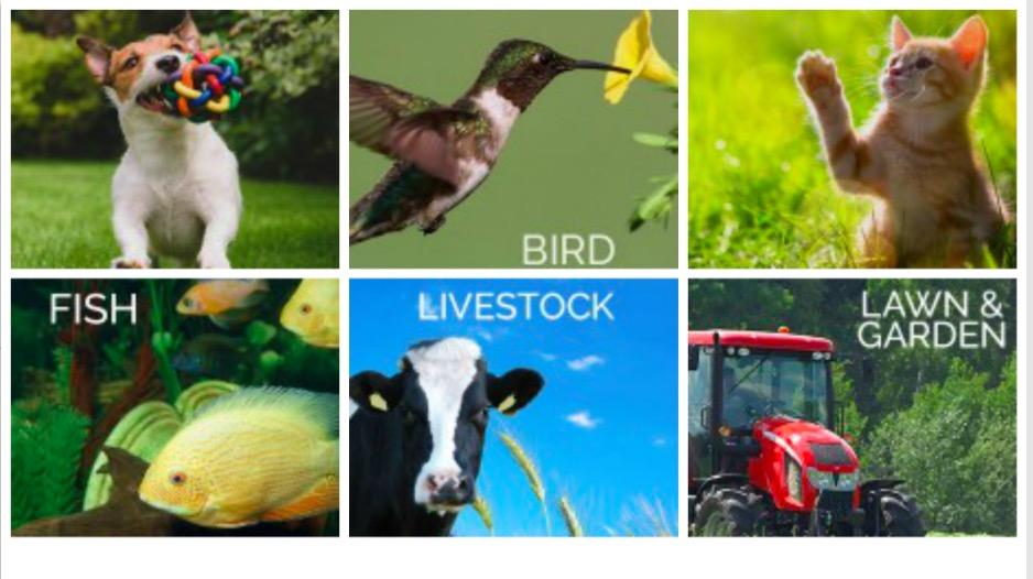 HorseLoverZ Pet Supply Liquidation Sale
