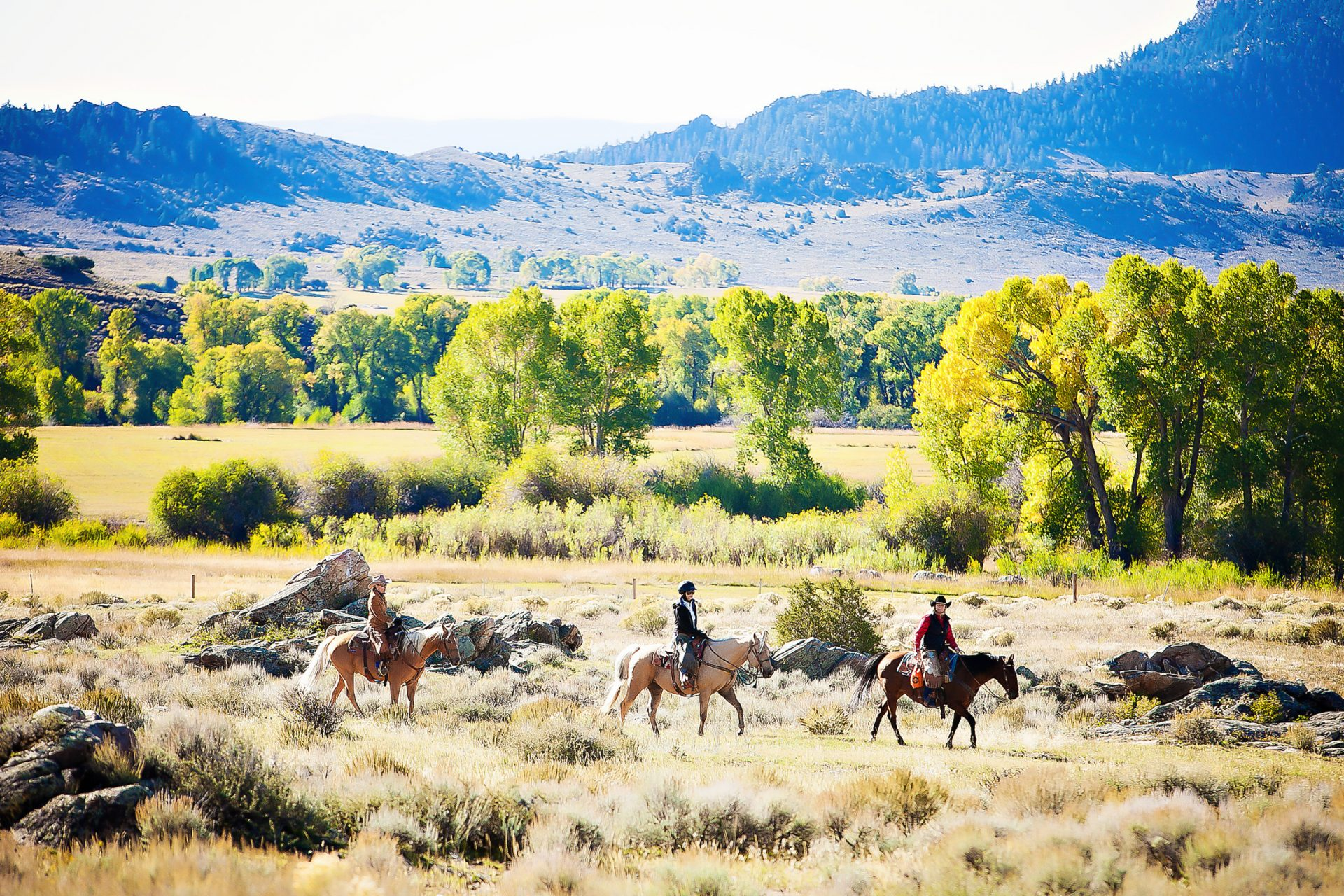 Brush Creek Ranch, Best Dude Ranch Family Vacations